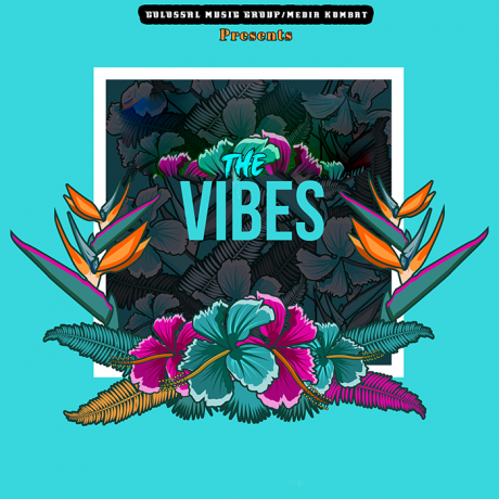 Various Artists - Colossal Music Group & Media Kombat - The Vibes